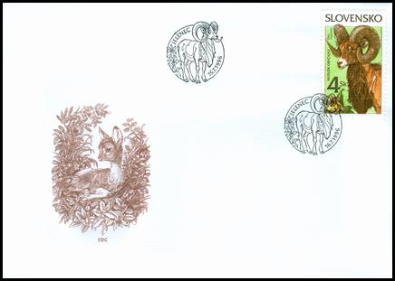 Ochrana prírody - Muflón obyčajný (Ovis musimon)