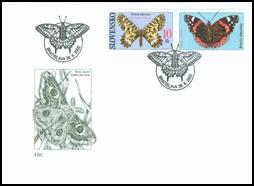 Butterflies - Southern Festoon