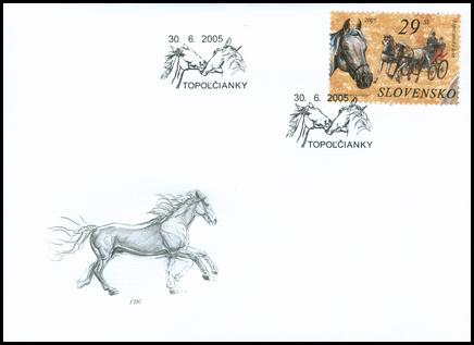 Ochrana prírody - Kone - Lipicanský kôň