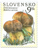 Nature Protection - Mushrooms (Boletus aereus)