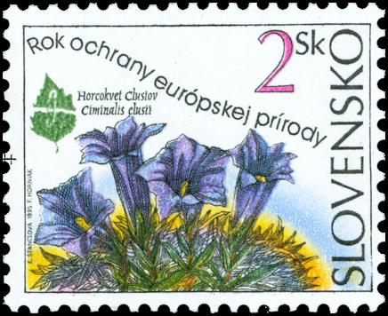 European Nature Conservation Year - Ciminalis clusii
