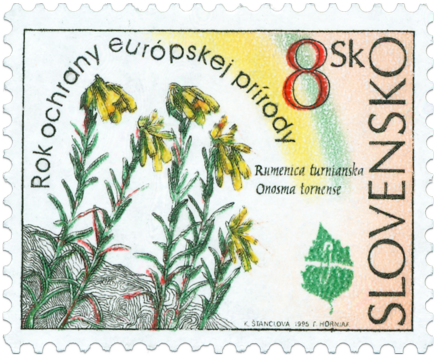European Nature Conservation Year - Onosma tornense