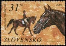 Ochrana prírody - Kone - Slovenský teplokrvník