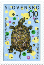 Preservation of Nature: European pond terrapin