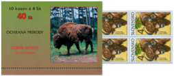 Nature Conservations - European Bison (Bison bonasus)