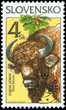Ochrana prírody - Zubor hôrny (Bison bonasus)