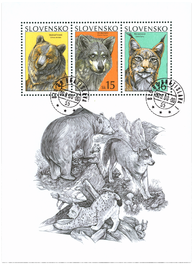 Brown Bear, Common Wolf, Lynx