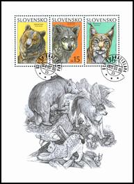 Ochrana prírody - Medveď hnedý, vlk obyčajný, rys ostrovid