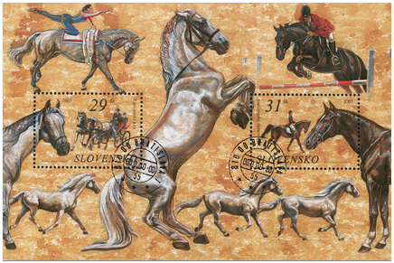 Ochrana prírody - Kone - Lipicánsky kôň a Slovenský teplokrvník