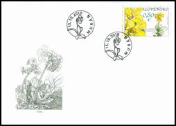 Nature Protection: Muránska Plain - Primerose (Primula Auricula)