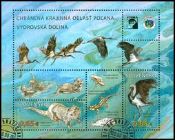 Ochrana prírody: Chránená krajinná oblasť Poľana – Vydra riečna a Bocian čierny