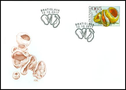 Ochrana prírody: pohárovka ohnivá (Caloscypha fulgens)